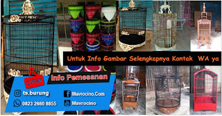 0823.2660.8855 - Harga Sangkar Burung Mentah di Palembang