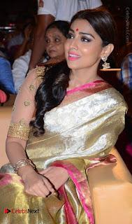 Actress Shriya Saran New Images in Silk Saree at Gautamiputra Satakarni Audio Launch  0020.jpg