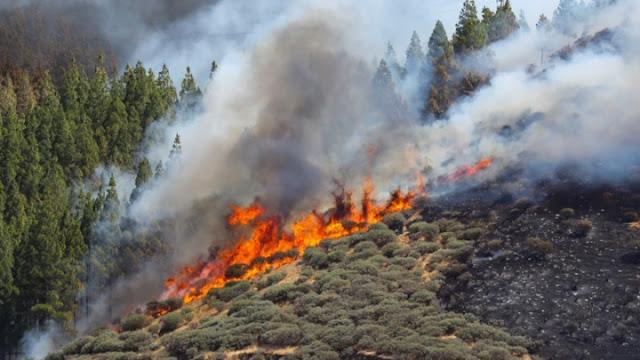 Μεγάλη πυρκαγιά στη Βάρη - Εκκενώθηκαν τα χωριά SOS