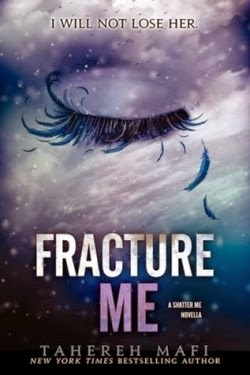 http://lachroniquedespassions.blogspot.fr/2014/01/insaisissable-tome-25-fracture-me.html