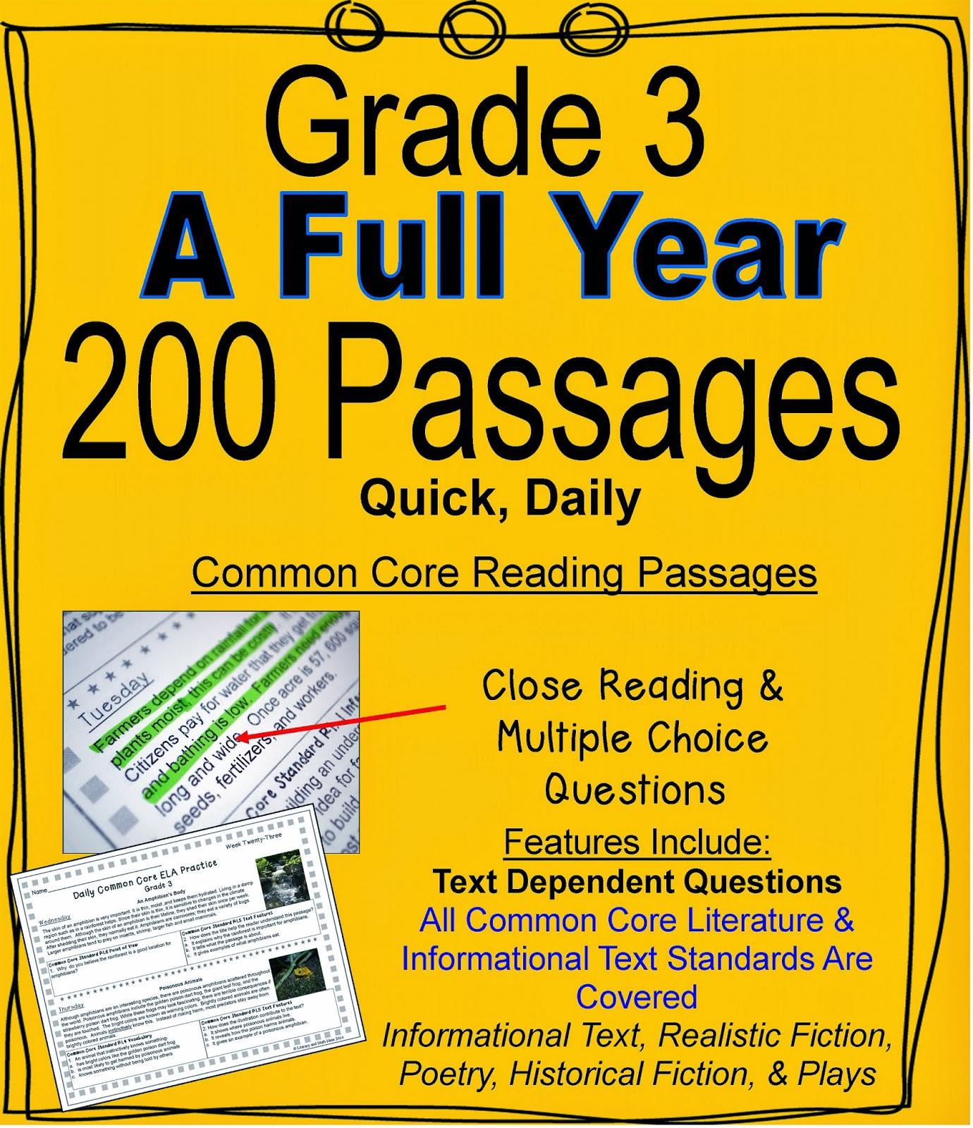 Literacy Amp Math Ideas Grade 3 A Full Year Of Daily