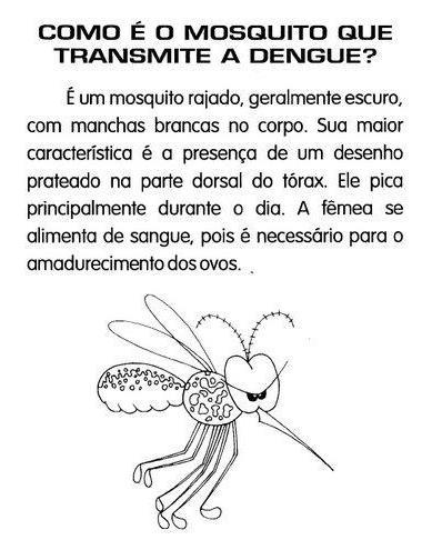 ensinando com carinho atividades sobre a dengue