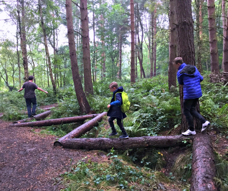 10 Things To Do During Half-Term | Visit Calke Abbey and venture into the woods.