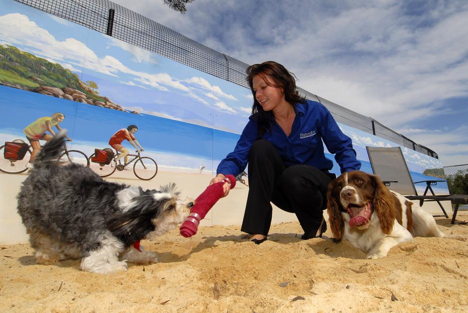 Dog lover ariel Ariel Winter