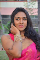 Actress Risha Pos in Pink Silk Saree at Saravanan Irukka Bayamaen Tamil Movie Press Meet  0005.jpg