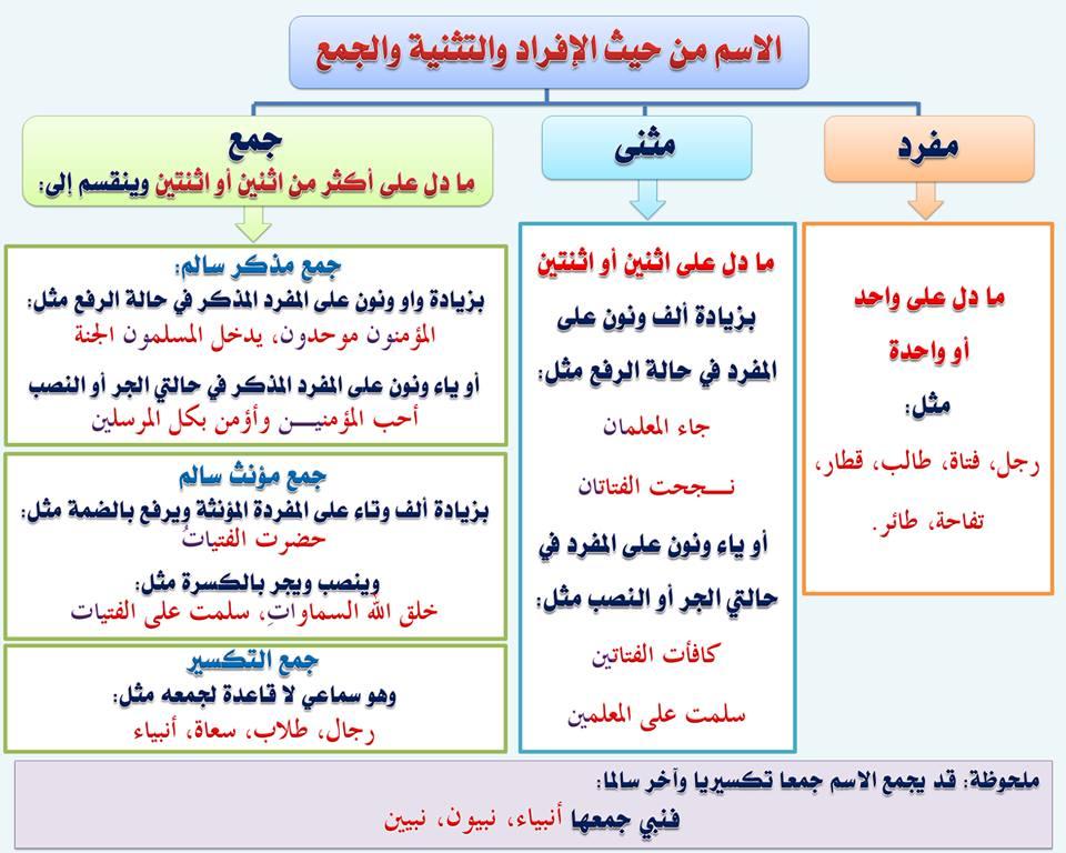 بالصور قواعد اللغة العربية للمبتدئين , تعليم قواعد اللغة العربية , شرح مختصر في قواعد اللغة العربية 10.jpg