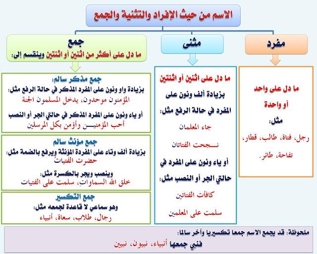 """انفراد.... كل قواعد اللغة العربية لطلاب """"ابتدائي - اعدادي - ثانوي"""" في صورة لوحات مبسطة مع الشرح والتدريبات 10"""