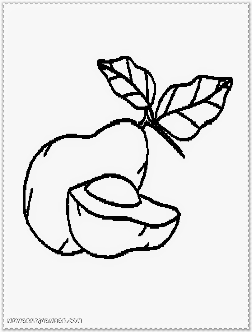 Avocado Fruit Printable Coloring Pages