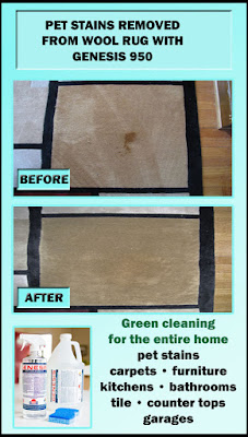 how to clean rug stains