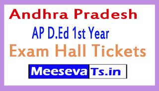 AP D.Ed 1st Year Exam Hall Tickets