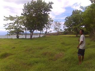 Pulau Sunut