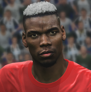 PES 2017 Faces Paul Pogba by WER Facemaker