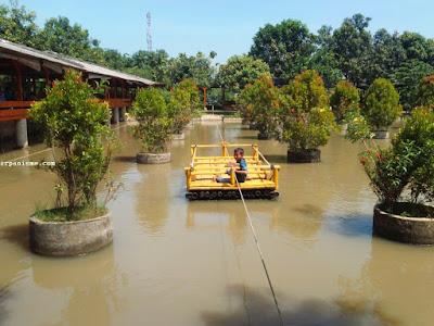Saung Mang Ajo Karawang Pemancingan Restoran