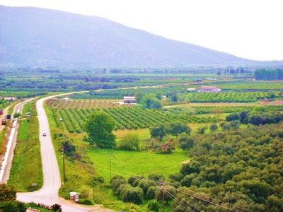 Ζητούνται για ενοικίαση καλλιεργήσιμα χωράφια