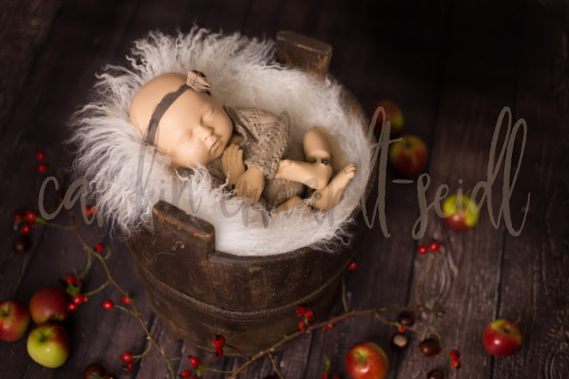 https://www.etsy.com/de/listing/561748843/digital-backdrop-newborn-fall-winter?ref=shop_home_active_1