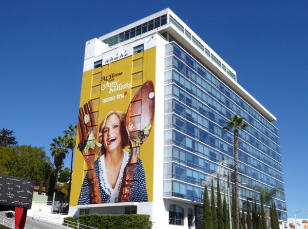 At Home with Amy Sedaris series premiere billboard
