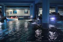 Siam Ocean World Paragon Bangkok
