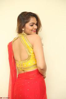 Actress Ashwini in Golden choli Red saree Spicy Pics ~  099.JPG
