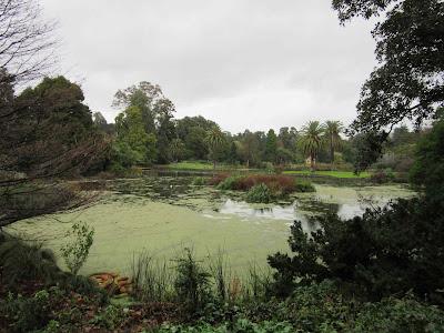 Real Jardín Botánico. Melbourne