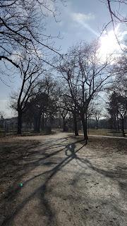 Walking through the park in Vienna