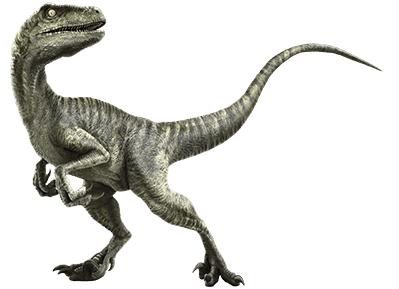 Mundo Jur 193 Sico Jurassic World Vean Los Dinosaurios Que