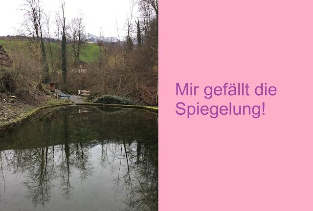 Spiegelung im Teich der Gesslerburg