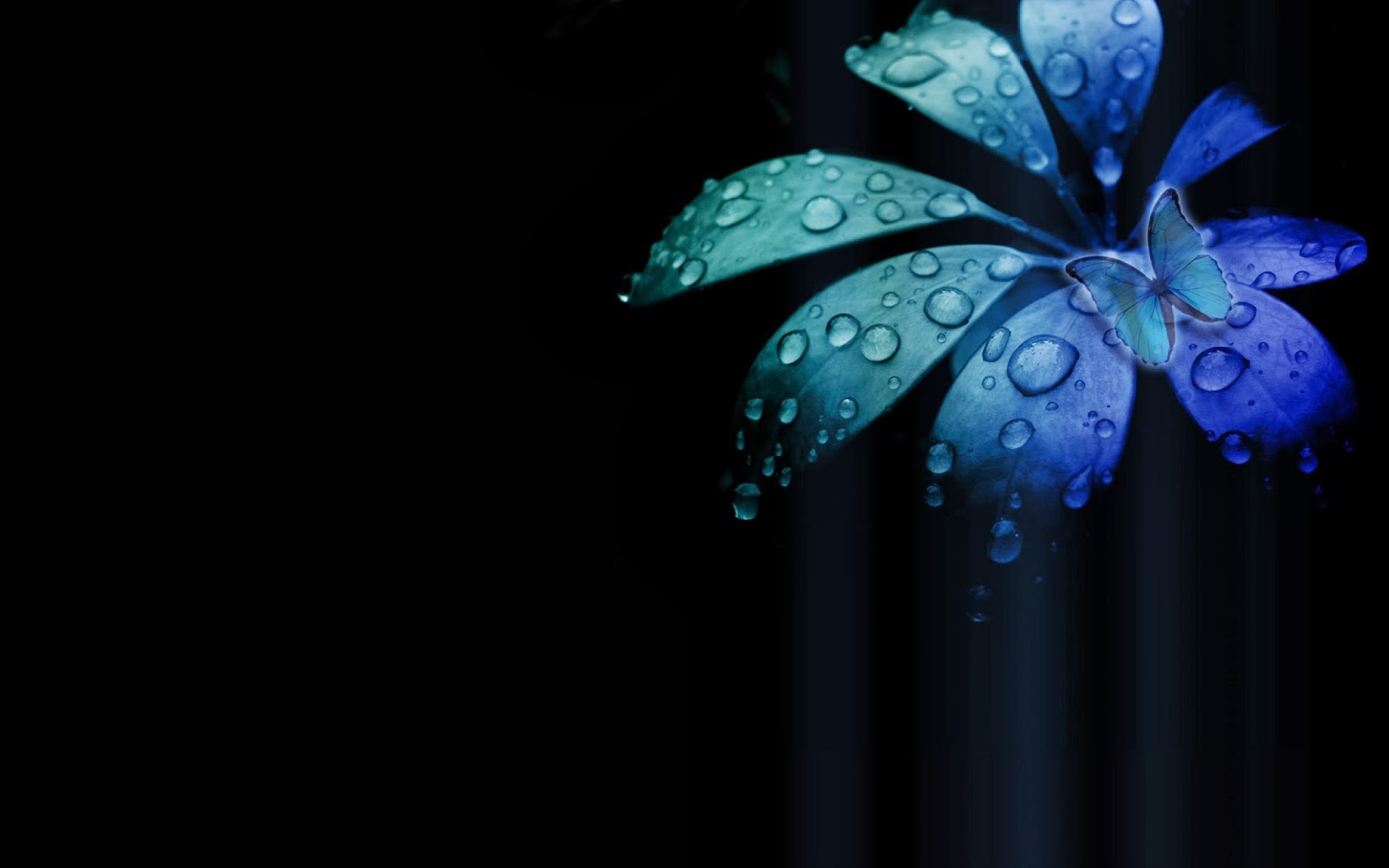 Abstract Wallpaper Black Hearts Blue 3d And Hd Wallpaper: خلفيات سوداء 2014