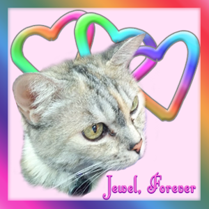 "An image of Jewel surrounded by colorful hearts. It says, ""Jewel Forever"" on the image as well."