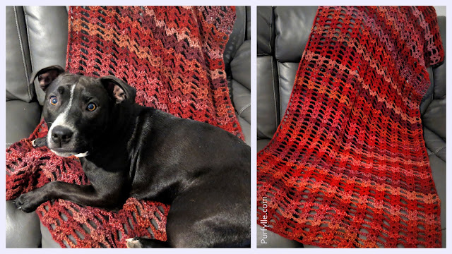 Puppy approved Super Fast Crochet Shawl Pattern
