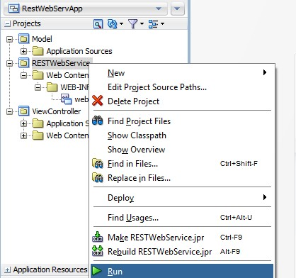 Create REST Web Service with Application Module