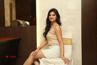 Actress Kamana Ranawat  Pictures in Short Dress at Selfie Raja Movie Success Meet  0337.JPG