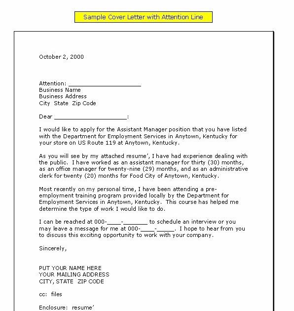 Erwiin Blog Application Letter