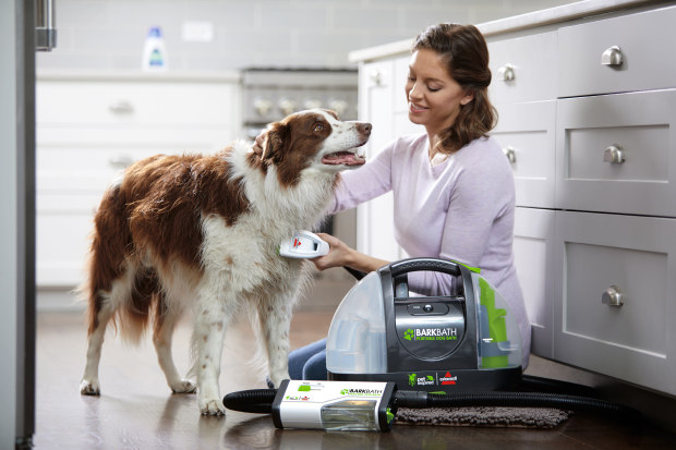 Best Dog Vacuum Cleaner