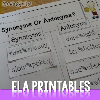 Synonym Antonym Sort