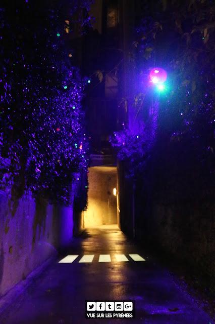 Noël à Pau 2017 les lucioles paloises