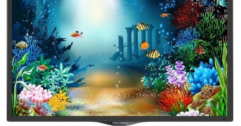 Harga Tv Led Polytron Pld 32v710 Digital Tv 32 Inch