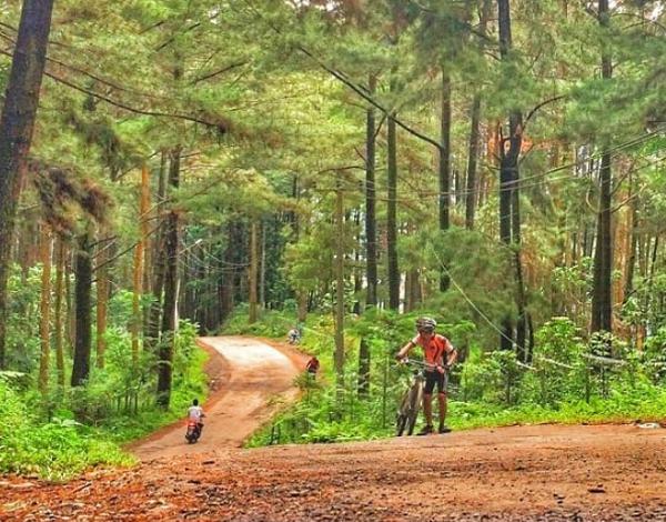 Tempat Wisata Alam di Bogor Gunung Pancar