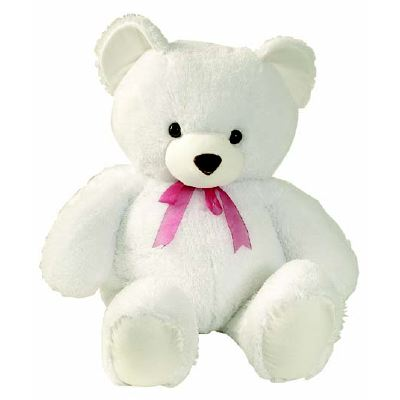 cute teddy bears picturesWhite Teddy Bears Pictures