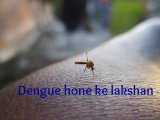 Dengue ke lakshan aur isse bachav ke upay