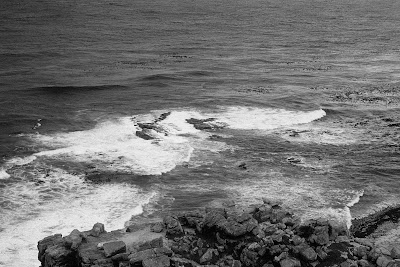 Cape Point, Cape Town, Table Mountain National Park, black and white, South Africa