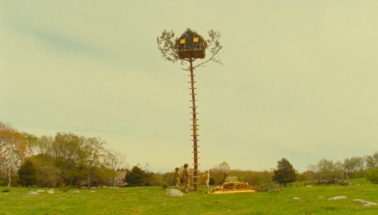 Moonrise Kingdom. | Reel Insights