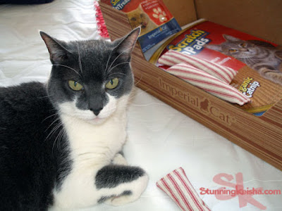 Cat Claws Subscription Box: The Gift That Keeps On Giving. Win One Here! #sponsored