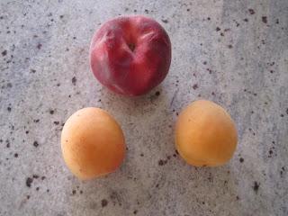Abricots et pêche pour réaliser un smoothie