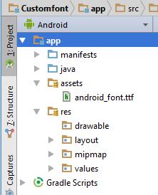 Paste the font inside assets folder