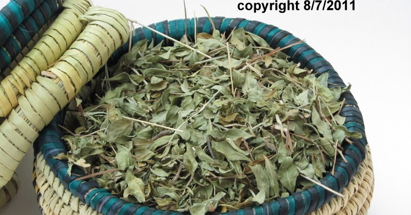 Herbal Remedies In Islaam Henna In Islaam Summary