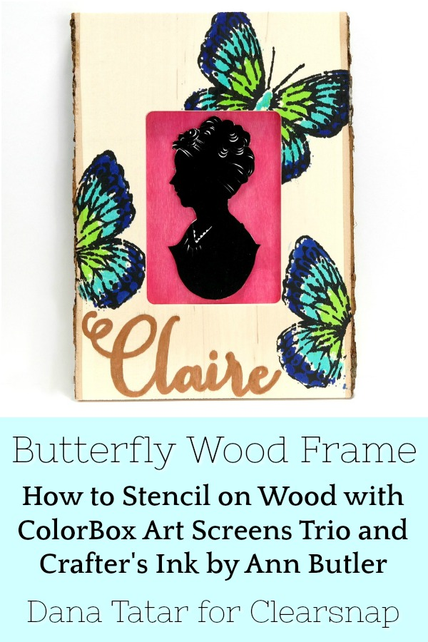 Blue and Green Stenciled Butterfly Wood Frame with Child Silhouette and Copper Lettered Name
