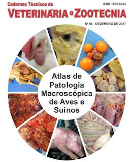 CAPA DO EBOOK SOBRE PATOLOGIA MACROSCÓPICA DE AVES E SUÍNOS