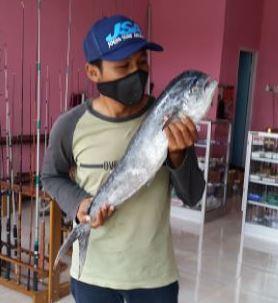 Mancing ikan Lemadang - Ikan Mahi mahi