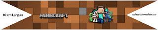 Banderitas para comida Gratis para Fiesta de Minecraft.