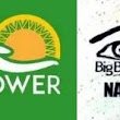 Why Npower NextLevel Engagement Is Key - A Case Study Of BBNaija 2019 Audition